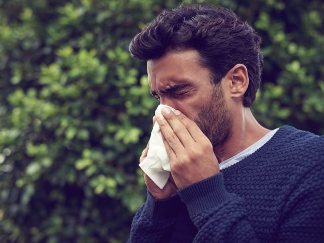 Common Florida Allergies