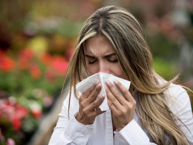 Things You May Not Know About Seasonal Allergies