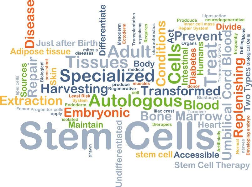 Interventional Regenerative Orthopedic Medicine (IROM