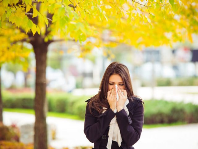 Why We Have Allergies