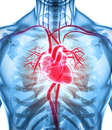 Advanced Cardiology Associates - Cardiac Surgeries & Procedures