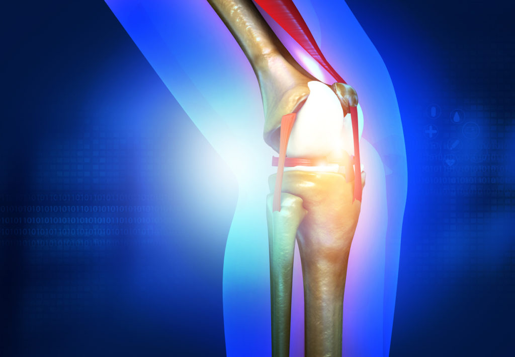 an illustration of a knee with a focus on a pain point