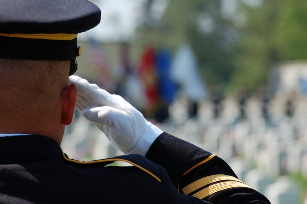 stem cell therapies for vets