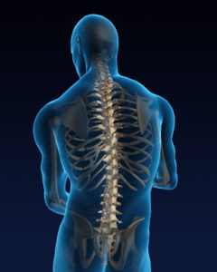 Spine Surgery and Recovery