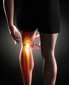 Anatomy of a man's knee