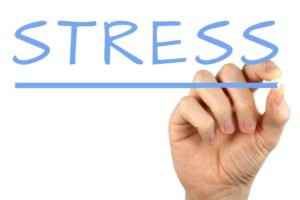 stress - why you are gaining belly fat - premier vein and vascular - tampa and largo florida - trusculpt