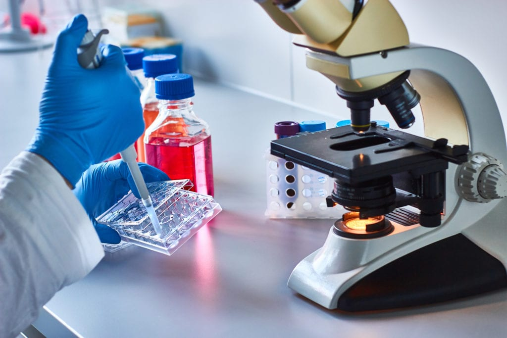 The Most Useful Stem Cell Research to Date - Lynx Healthcare