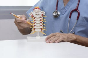 Doctor demonstrate cervical spine model