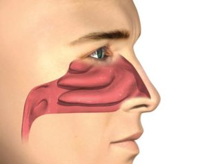 RhinAer® Procedure - Chronic Rhinitis Treatment Austin, TX - Chronic Rhinitis Treatment near me - ent near me