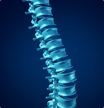 Orthopedic - Spine - Neck surgery - Spectrum Orthopaedics - Dr. Stefanko - Herniated Disc - Myelopathy - Degenerative Disease - Radiculopathy - Spinal Stenosis