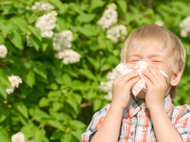 Be on the Lookout for this Springtime Childhood Allergies