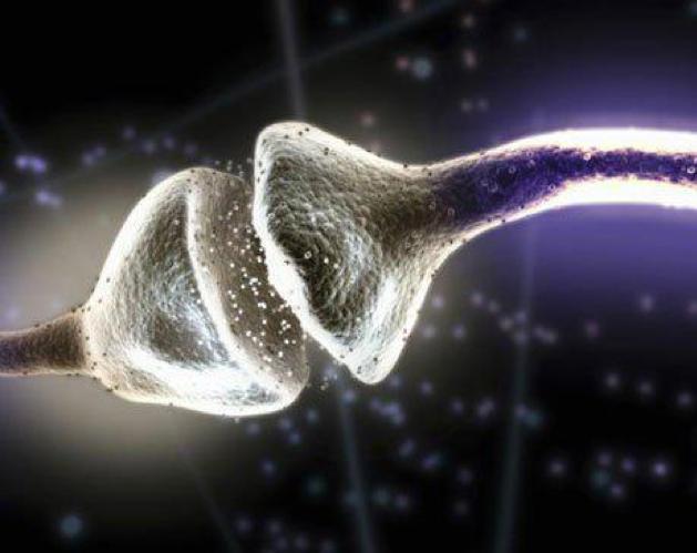 Neurotransmitters - Natural Balance Wellness Medical Center