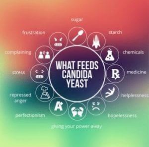 Candida Overgrowth Treatment Ann Arbor, MI - Natural Balance Wellness Medical Center