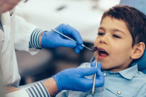 Little boy having regular dental check-up