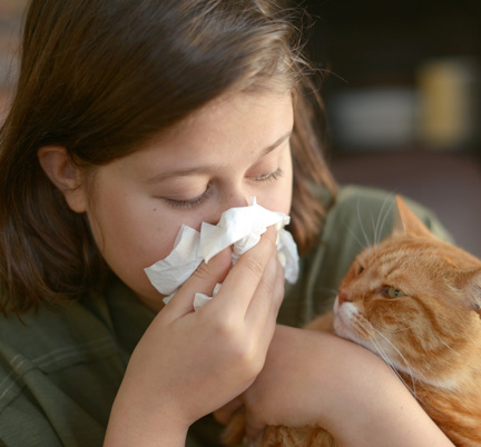 allergists near me - allergy and asthma specialists - Cat allergies - Dog Allergies - Pet Allergy Treatment Will County - Pet Allergy Treatment DuPage County, IL