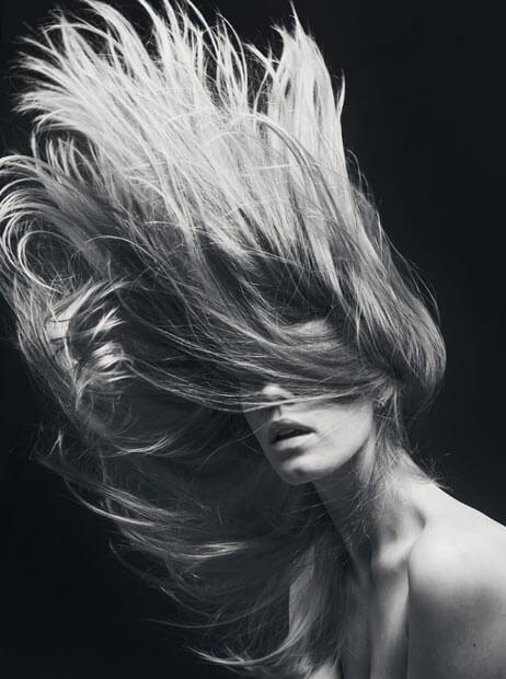 Hair Services - Volume Lashes - Eyebrow Sculpting - Privé Salon & Med Spa