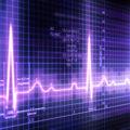 Echocardiogram Testing