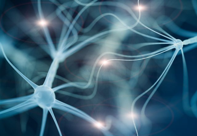 Can Stem Cell Therapy Help Treat Nerve Damage?