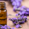 essential oil for back pain